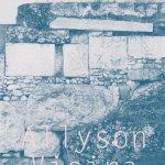 Allyson Vieira The Plural Present