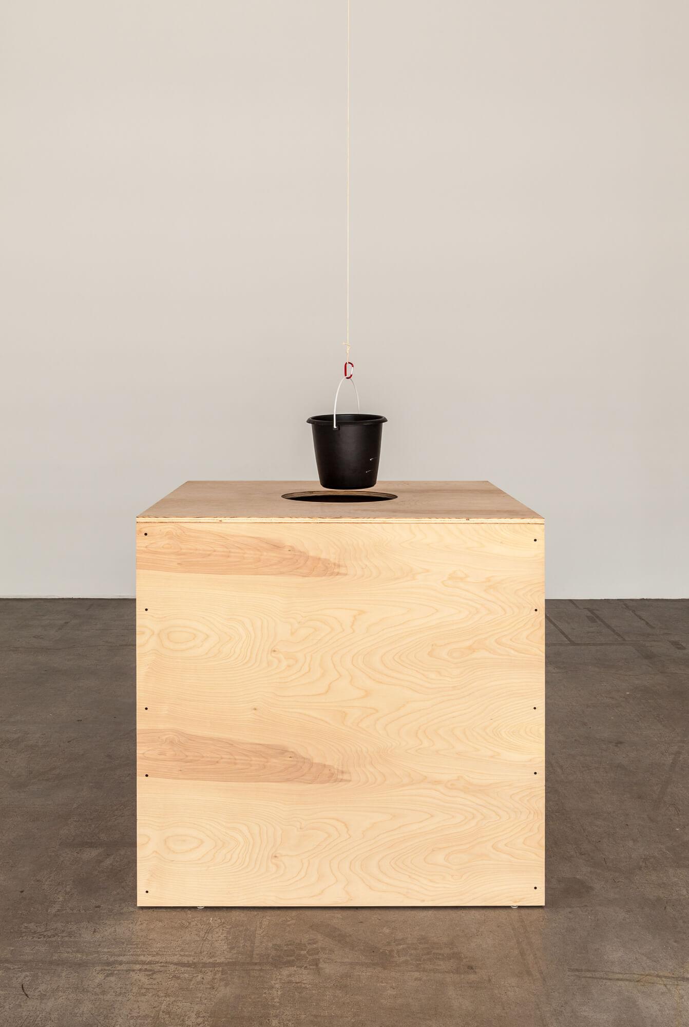 Roman Signer, Pendel (Pendulum) Swiss Institute