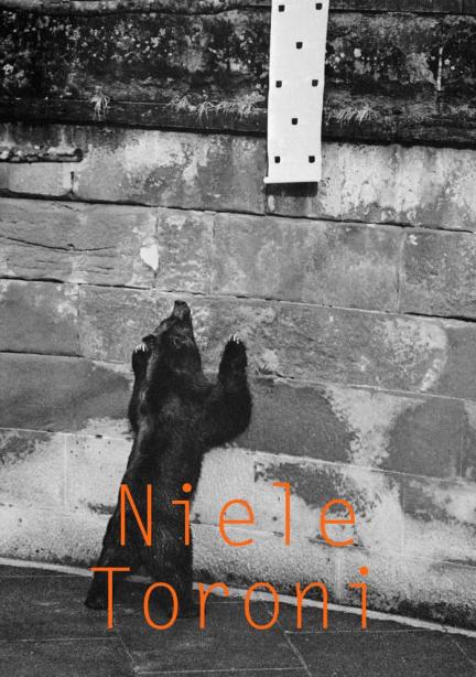 Niele Toroni SI Series Cover